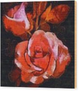Roses Painted And Drawn Wood Print