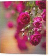 Roses Peace Wood Print