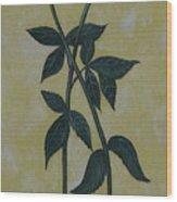 Long Stem Roses Wood Print