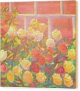 Roses The Gift Of Lovers. Wood Print