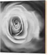 Rose's Whisper Black And White Wood Print