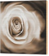 Rose's Whisper Sepia Wood Print