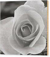 Rosewood009 Wood Print