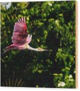Rosie In Flight Wood Print