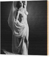 Rosie Nude Fine Art Print In Sensual Sexy 4609.01 Wood Print