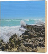 Ross Witham Beach Hutchinson Island Florida Wood Print
