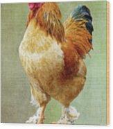 Otis T Rooster Wood Print