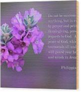 Rosy Lavender Sage Blossoms Phil.4 V 6-7 Wood Print