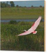 Rosy Soar 61 Wood Print