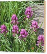 Rosy Wildflowers Wood Print
