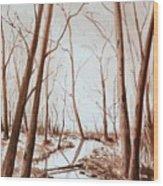 Rotary Bog Wood Print