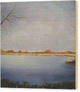 Rotary Pond Wood Print