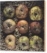 Rotten Apples Wood Print