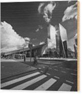 Rotterdam Centraal  Wood Print