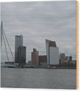 Rotterdam What A View Wood Print