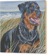 Rottweiler At The Beach Wood Print