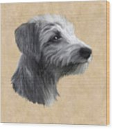 Rough Coated Lurcher  Wood Print