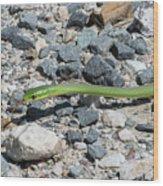 Rough Green Snake Wood Print