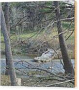 Rough River At Times  Wood Print
