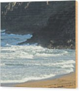 Rough Shores Wood Print