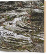 Rough Timeworn Rhythm Along The Kaaterskill Creek Wood Print