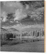 Round Lake State Park 6 Wood Print