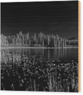 Round Lake State Park Idaho Wood Print