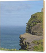 Round Stone Tower Refferred To As O'brien's Tower In Ireland Wood Print