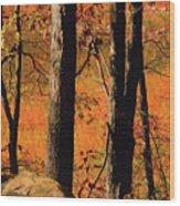 Round Valley State Park 3 Wood Print