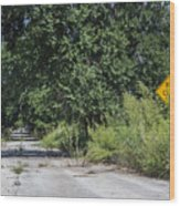 Route 66  End Of The Road Wood Print