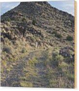 Route 66 On The La Bajada Grade Wood Print