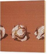 Row Of Cotton Wood Print