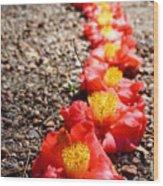 Row Of Flowers Wood Print