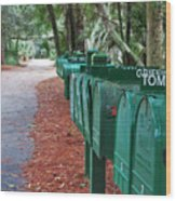 Row Of Green Mailboxes7426 Wood Print