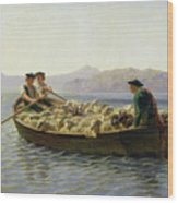Rowing Boat Wood Print