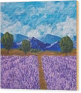 Rows Of Lavender In Provence Wood Print