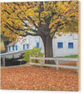 Roxbury Connecticut Barn Wood Print