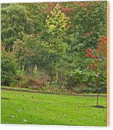 Royal Autumn Colors Wood Print