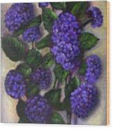 Royal Blue Hydrangea Wood Print