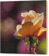 Royal Colors Wood Print