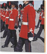 Royal Guards In Ottawa Wood Print