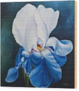 Royal Lilly Wood Print