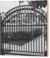Royal Palm Gate Wood Print