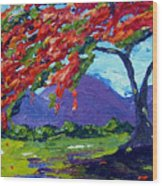Royal Poinciana Palette Oil Painting Wood Print