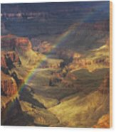 Royal Rainbow Wood Print by Peter Coskun