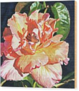 Royal Rose Wood Print by David Lloyd Glover