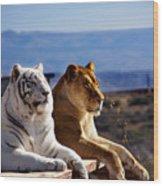 Big Cats Wood Print