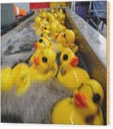 Rubber Duckies Wood Print