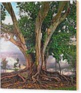 Rubber Tree Wood Print