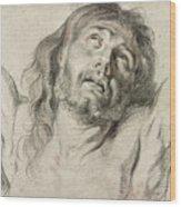 Rubens, Christ.  Wood Print